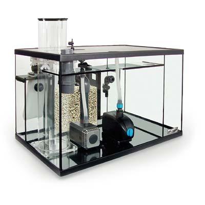Zierfisch center mering elos aqua studio meerwasser for Zierfisch shop